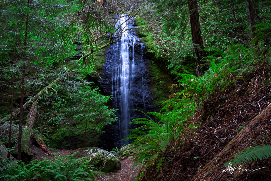 A photo of a waterfall in the forest
